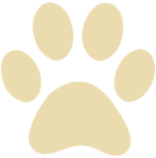 paw breakpoint