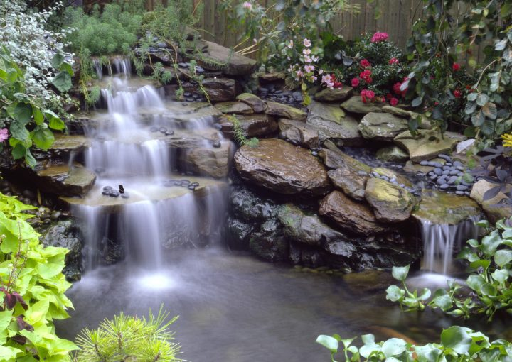 Create a Backyard Oasis